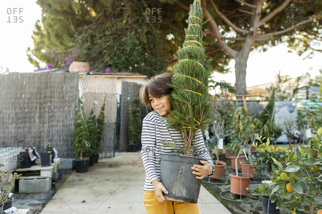 Portrait of boy carrying potted plant at plant nursery