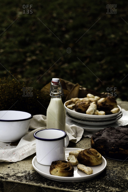 High angle of yummy cake and buns on ceramic plates in composition with fresh milk in glass bottle beside fragrant bouquet of wildflowers on stone table against blurred countryside with colorful trees
