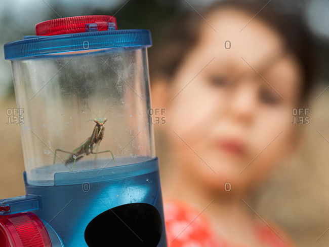 Blurred unrecognizable little girl in red dress examining insect in jar on summer day in nature