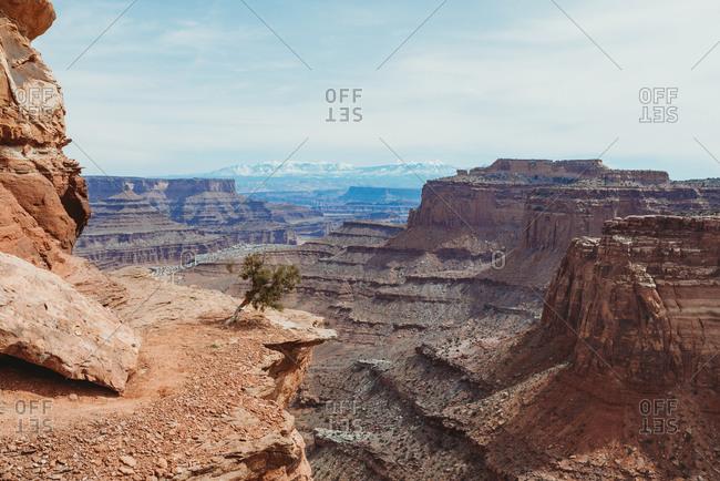 Beautiful view of Canyonlands National Park, Utah