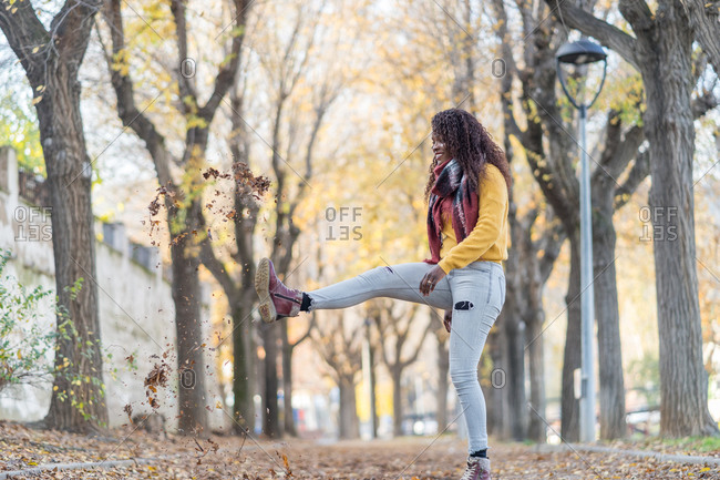 Stylish enthusiastic African American woman in warm jacket merrily kicking autumn leaves into air in park
