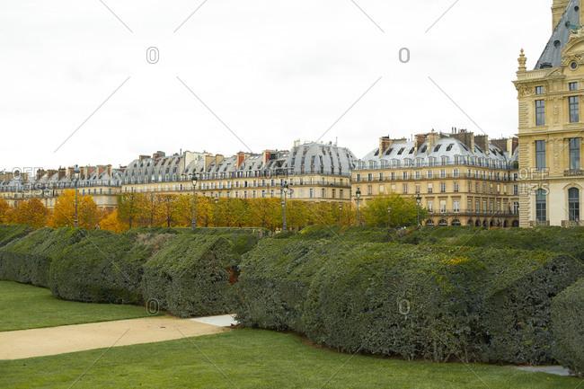 January 20, 2020: Tuileries gardens autumn landscape