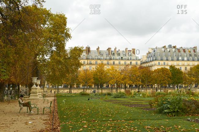 January 20, 2020: Paris, France6 November 2019: Tuileries gardens autumn landscape