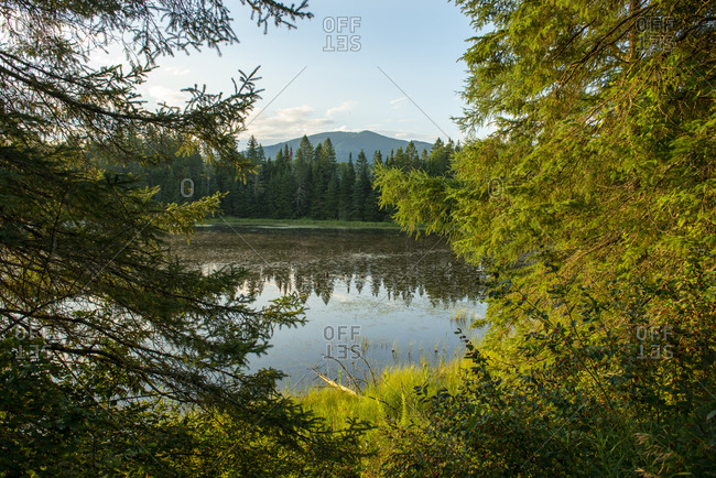 Scenic landscape of pond and mountains in East Burke, Vermont