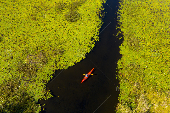 Lake Hortonia, Vermont - September 9, 2019: Aerial view of kayaker on lake surrounded by green lily pads