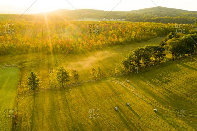 Sunbeams illuminating fall forest in Sudbury, Vermont