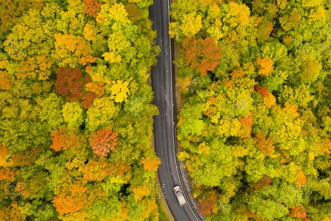 Drone view over highway leading through autumn forest in Brandon Gap in Goshen, Vermont