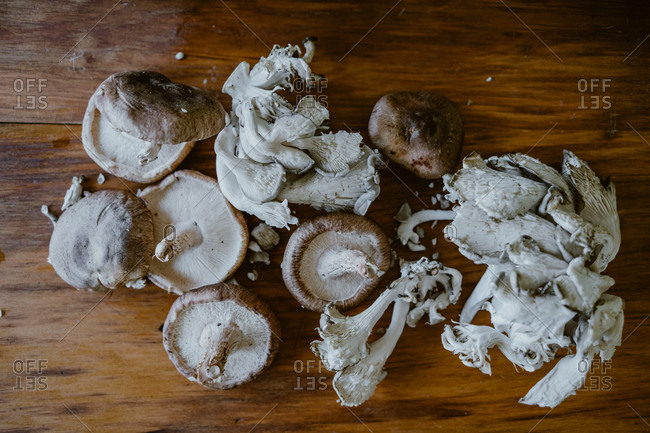Collection of mushrooms on wooden surface