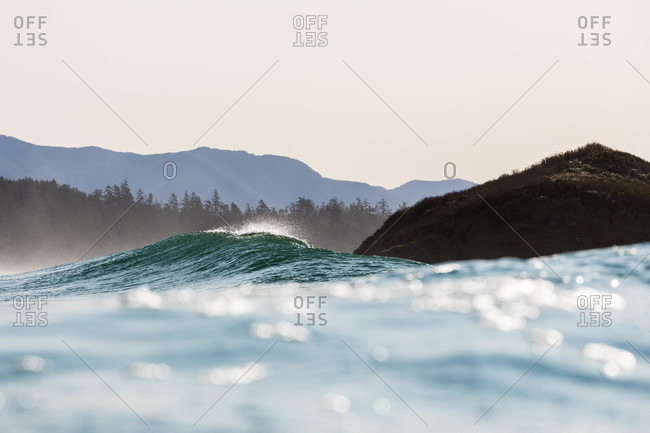 Wave cresting in the ocean off of Vancouver Island, British Columbia