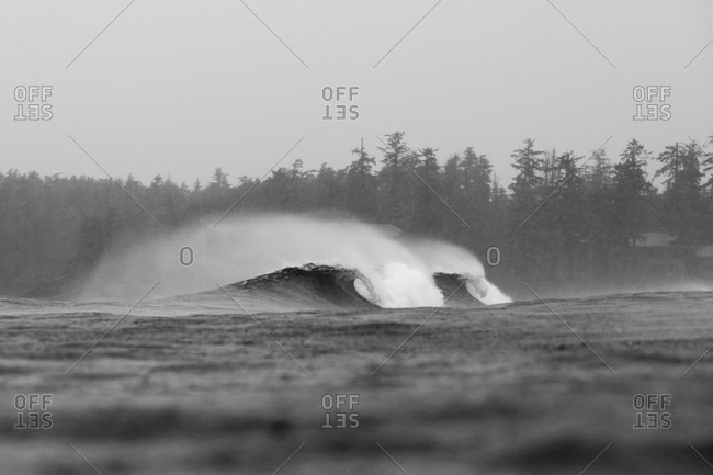 Cresting waves in the ocean in black and white