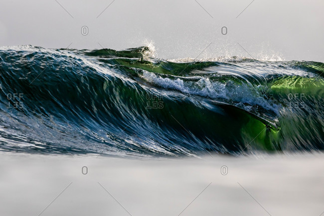 Large green and blue curling wave in the ocean