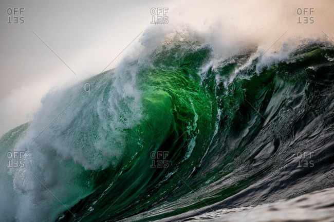 Cresting green wave in the ocean