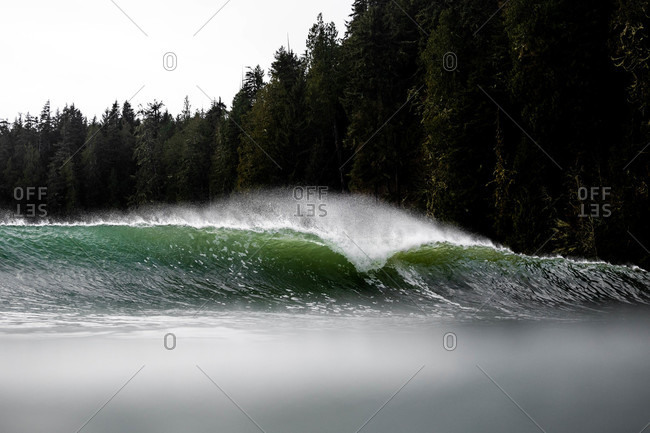 Cresting turquoise wave off the coast of Tofino, Vancouver, British Columbia