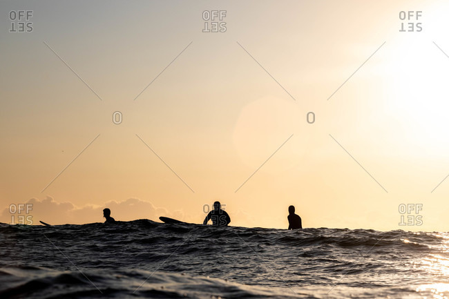 Silhouette of surfers sitting on boards in the ocean at sunset