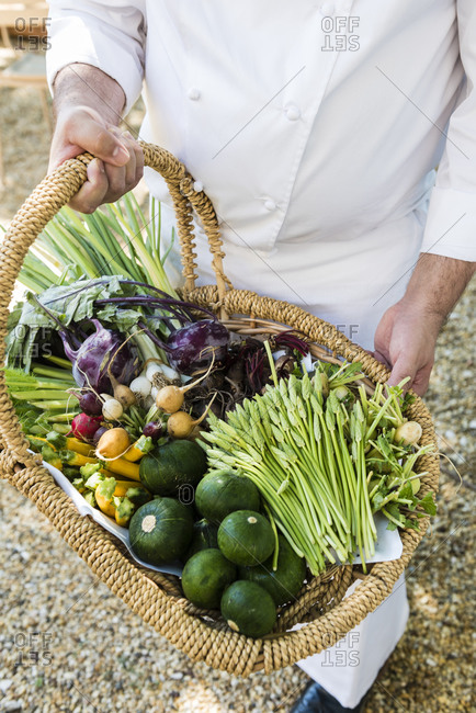 A chef holding a vegetable basket in a garden in Aix-en-Provence, Bouches-du-Rhone, France