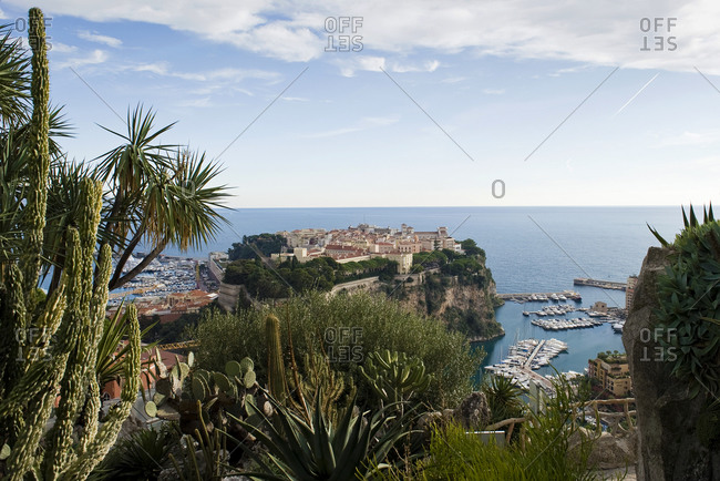 Panoramic view of Monaco Rocher with Grimaldi Palace from an exotic garden, Monaco