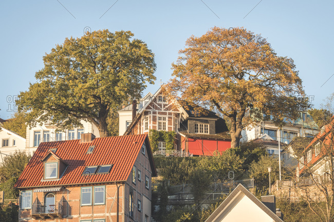 Germany- Hamburg- trees between suburb houses in autumn
