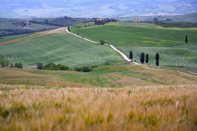 Italy- Tuscany- Orcia Valley- Pienza- Fields and hills