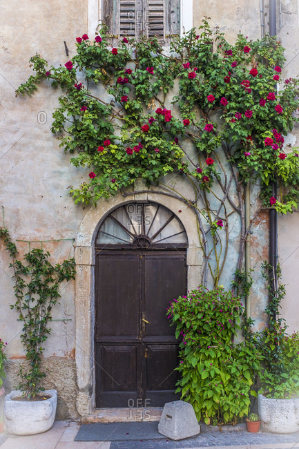 Italy- Province of Verona- Lazise- Potted flowers blooming beside house entrance doors