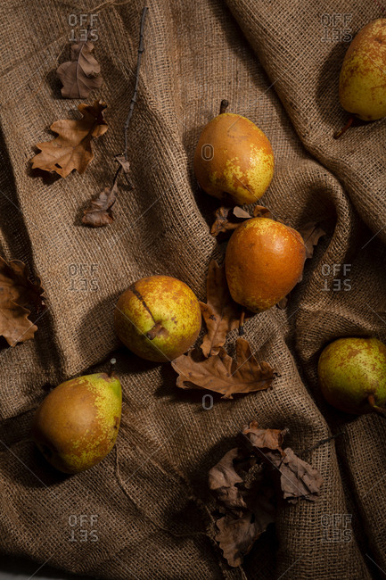 Overhead view of pears on rustic cloth