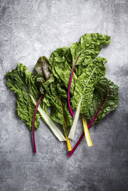 Raw Rainbow Chard - Offset Collection