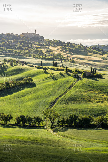 Pienza in background, green meadow and spring field in foreground, Val d'Orcia, Tuscany, Italy
