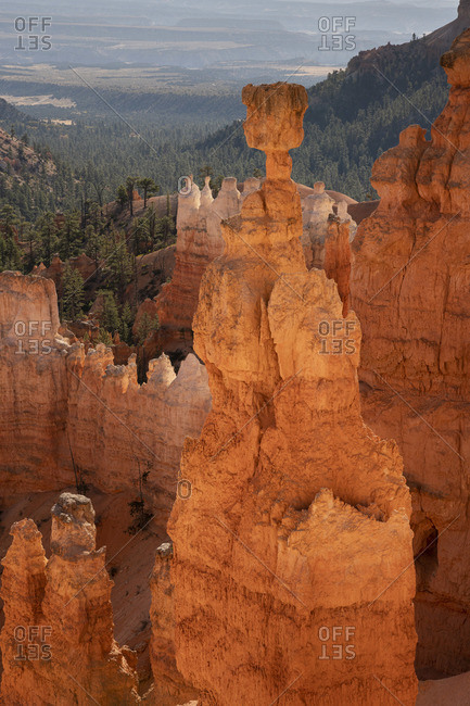 Popular rock formation (hoodoo) named Thor's Hammer taken from Navajo Loop Trail, Bryce Canyon National Park, Utah, USA