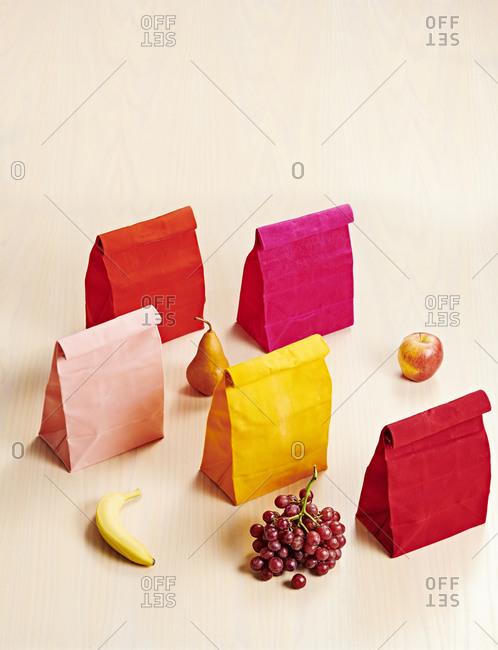 Colorful Reusable Canvas Bag Lunches