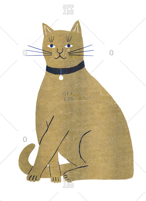 Illustration of a brown cat sitting on white background