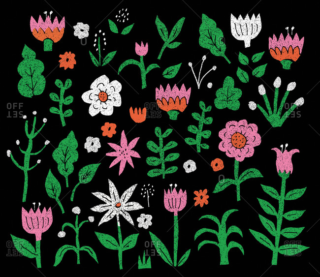 Colorful floral pattern illustration