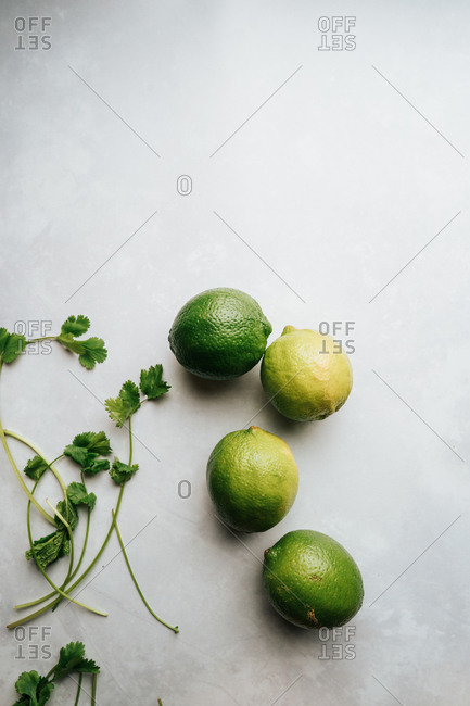 Lime and cilantro on a white countertop