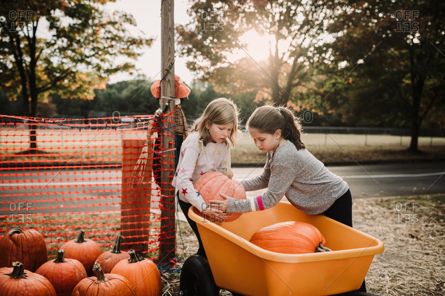 Two little girls picking up a pumpkin and placing it in a wheel barrow