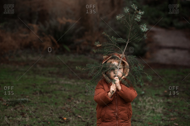Little boy holding a pine branch in front of his face
