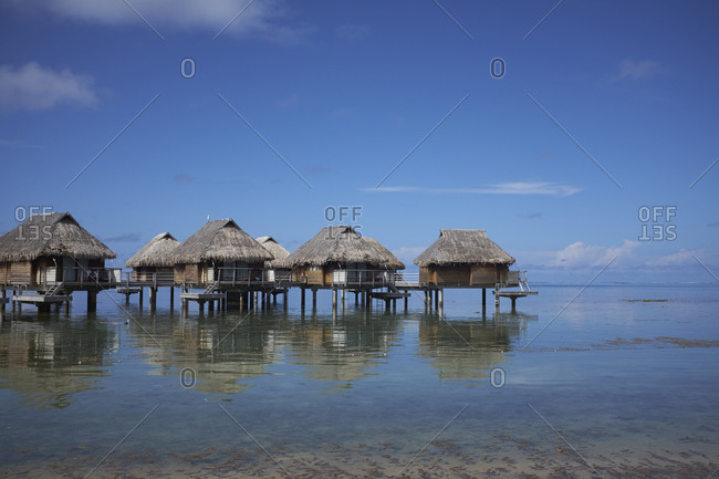 Several thatched roof bungalows on the Pacific coast of Mo'orea