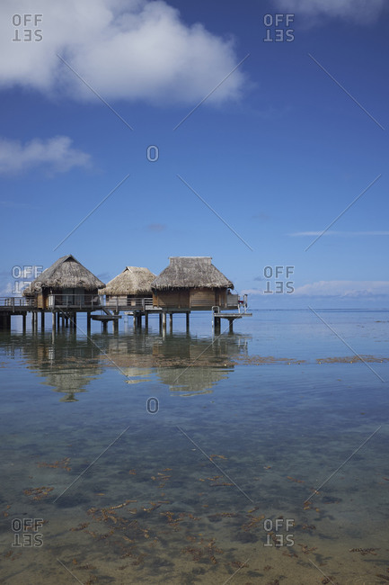 Thatched roof bungalows on the Pacific coast of Mo'orea