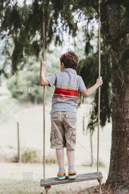 Rear view of boy standing on swing under pine trees