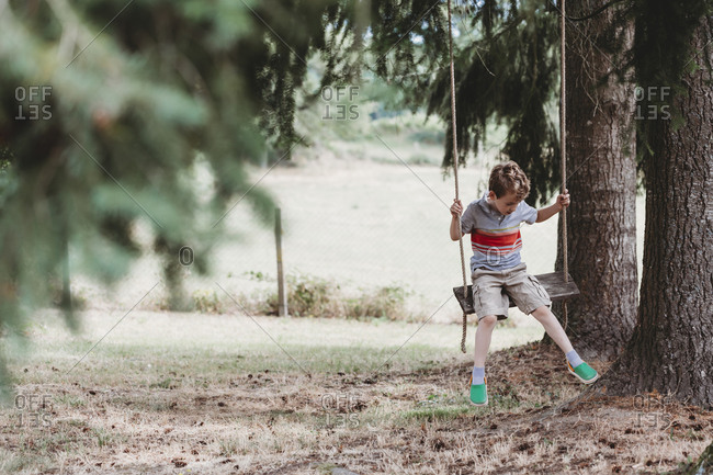 Front view of boy sitting on swing under pine trees