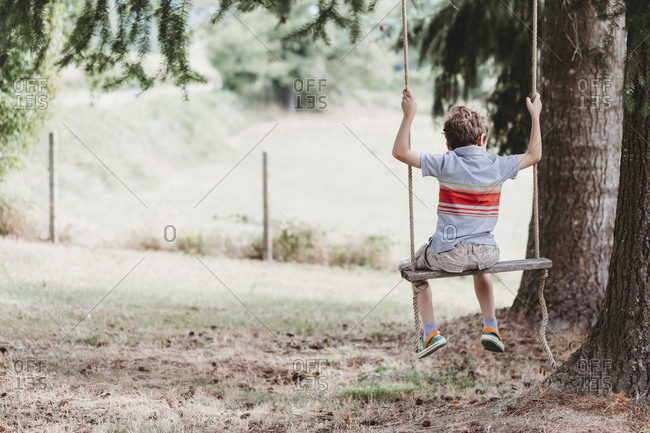 Rear view of boy sitting on swing under pine trees