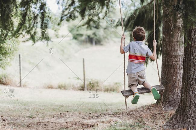 Rear view of boy kneeling on swing under pine trees