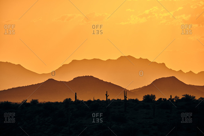 A telephoto sunset of saguaro cactus and sonoran mountains backlit.