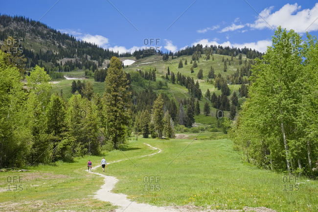 A couple hiking at jackson hole mountain resort in the summer