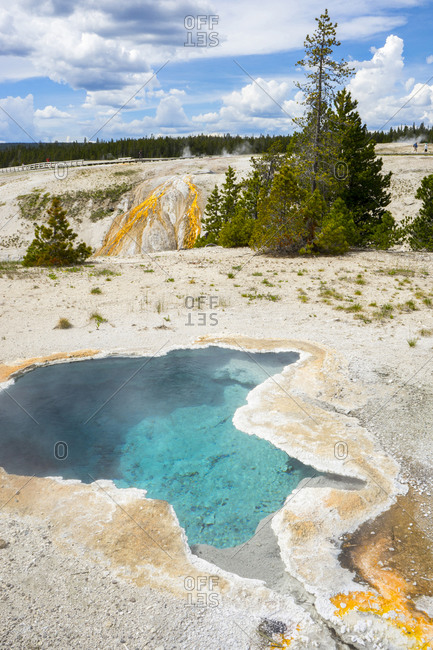 Blue star spring, with cascade spring in the background, yellowstone