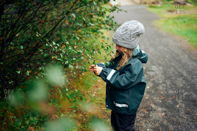 Enthusiastic girl in warm clothing touching berry from tree in forest