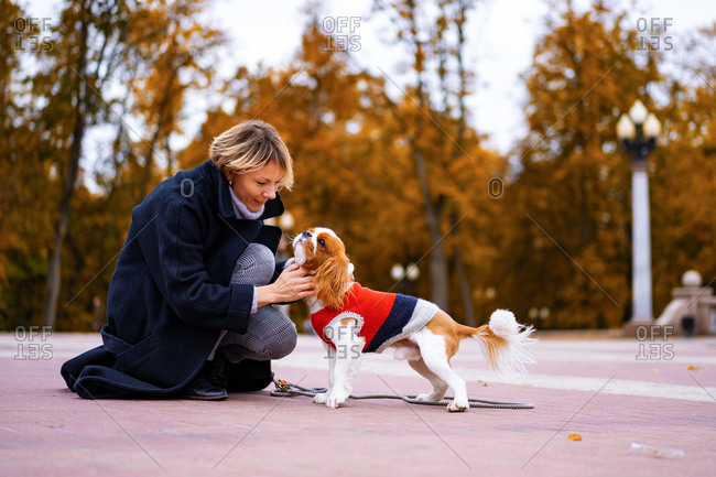 A female walks in the park with a cavalier king charles spaniel.