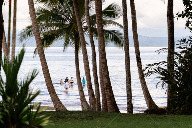 Family swimming off the coast of The Osa Peninsula in southwestern Costa Rica