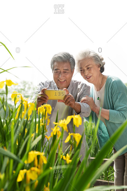 Elderly couple takes photos in the park