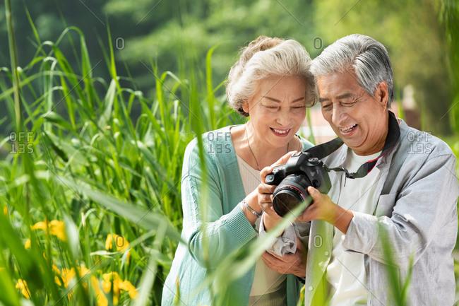 Elderly couple photos in the park