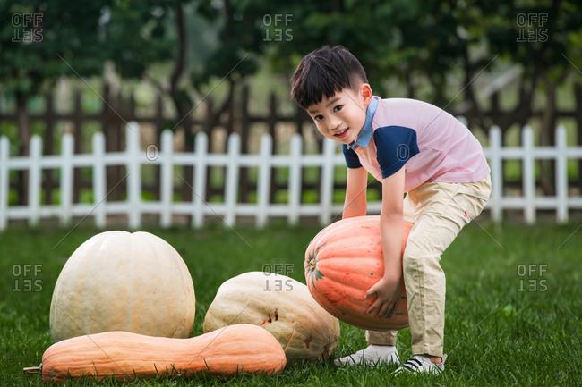 Asian boy picks up a pumpkin