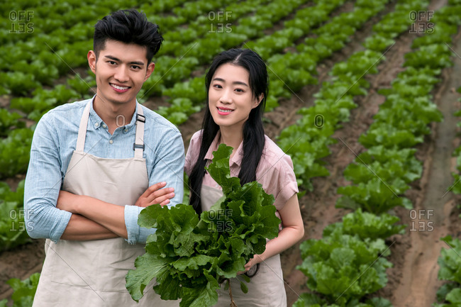 Asian couple picking vegetables outdoors