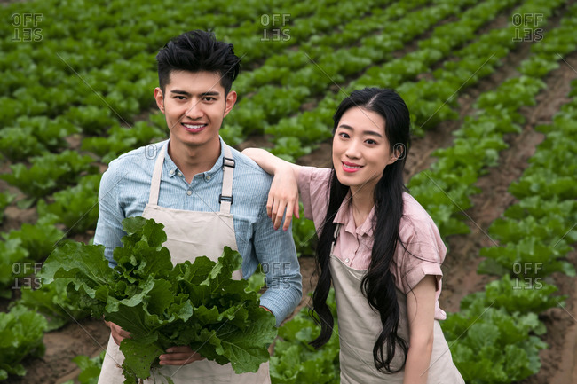 Asian couple pick vegetables outdoor